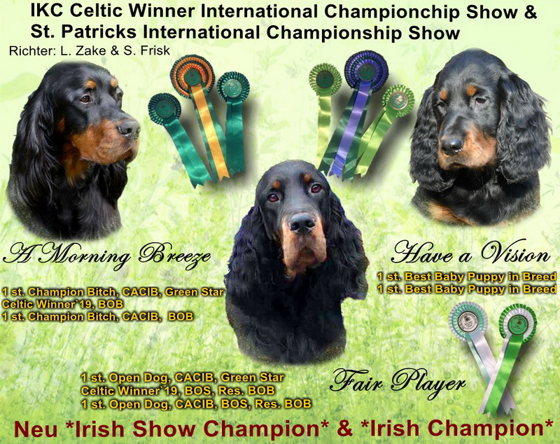 gordon-setter-zucht-foresters-of-darkmoor-celtic-winner