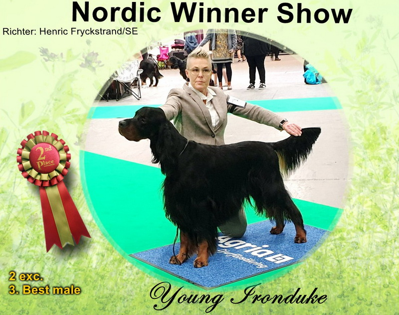 gordon-etter-zucht-foresters-of-darkmoor-nordic-winner